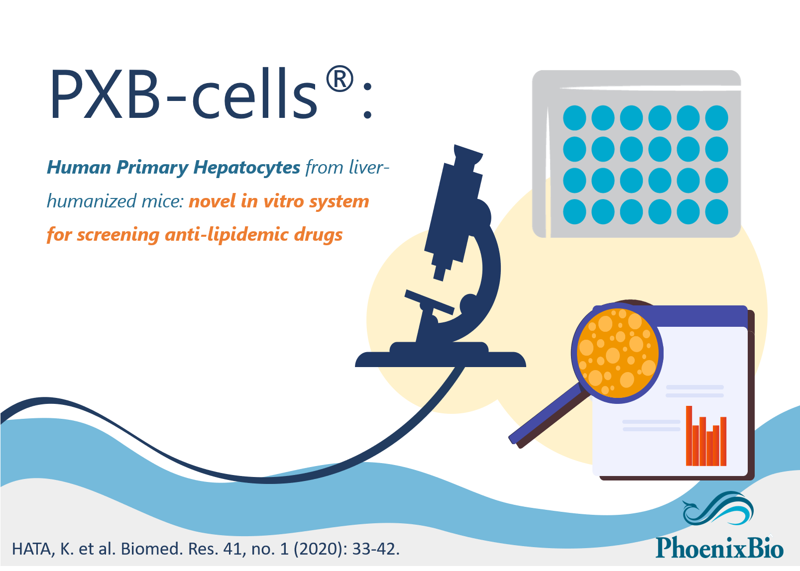 A new publication on lipoprotein profile and lipid metabolism of PXB-cells®
