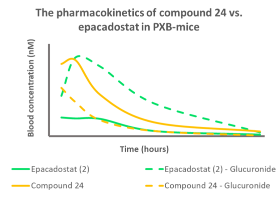 The pharmacokinetics of compound 24 vs. epacadostat in PXB-mice