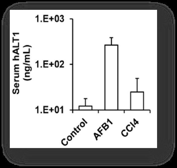 2Serum hALT1 levels in the PXB-mice measured with hALT1-specific ELISA