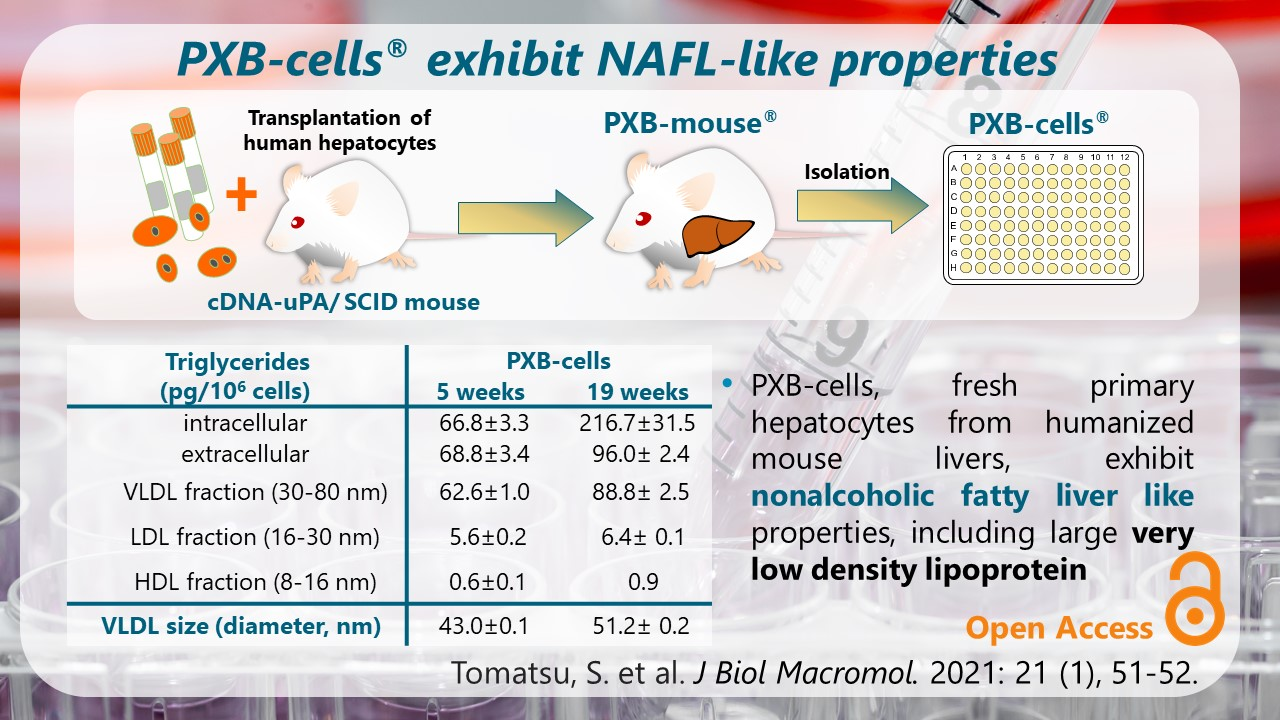 Non-alcoholic fatty liver-like properties of PXB-cells