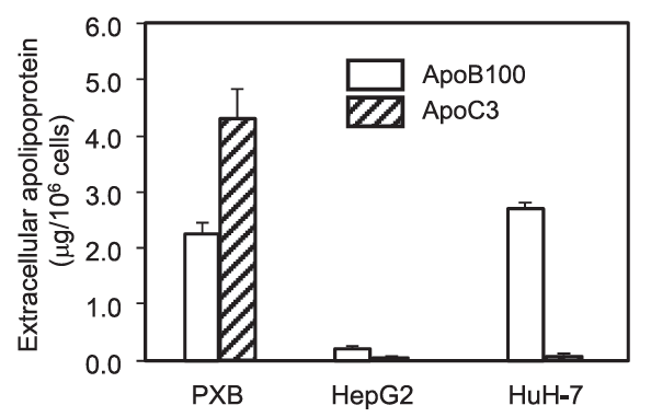 Extracellular apolipoproteins ApoB100 and ApoC3 in PXB-cells, HepG2 and HuH-7 cells